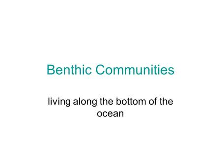 Benthic Communities living along the bottom of the ocean.