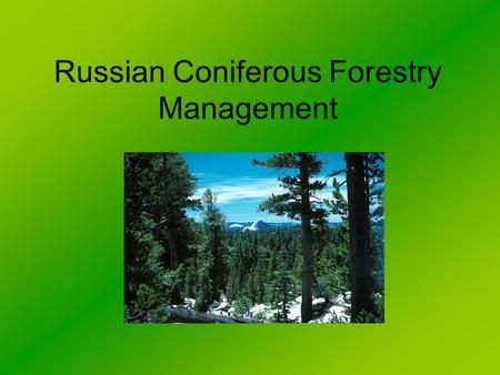 Russian Coniferous Forestry Management. Coniferous (Taiga) Forest This type of forest is found in the Northern hemisphere. It is absent from the Southern.