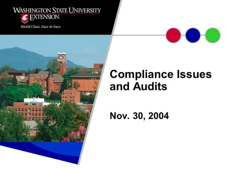 Nov. 30, 2004 Compliance Issues and Audits. TOPICS TO BE DISCUSSED Audits – definition, types of auditors, types of audits Role of WSU Internal Auditor.