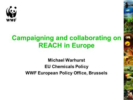 Campaigning and collaborating on REACH in Europe Michael Warhurst EU Chemicals Policy WWF European Policy Office, Brussels.