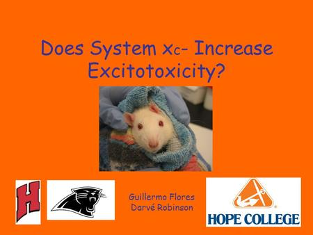Does System x c - Increase Excitotoxicity? Guillermo Flores Darvé Robinson.