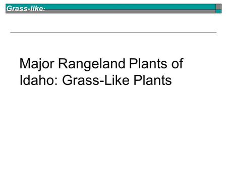 Grass-like : Major Rangeland Plants of Idaho: Grass-Like Plants.
