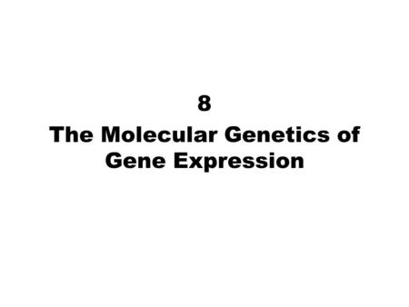 8 The Molecular Genetics of Gene Expression. Fig. 8.6c Transcription Elongation.