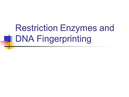 Restriction Enzymes and DNA Fingerprinting. Molecular Scissors for Cutting DNA Precisely Its because of these biological catalysts that genetic engineering.