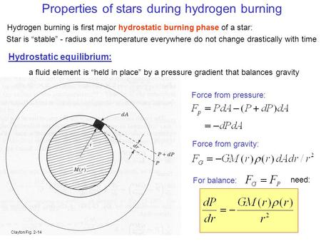 Properties of stars during hydrogen burning Hydrogen burning is first major hydrostatic burning phase of a star: Hydrostatic equilibrium: a fluid element.
