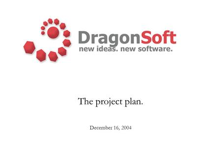 The project plan. December 16, 2004. Agenda The project plan –Risks –Language decision –Schedule –Quality plan –Testing –Documentation Program architecture.