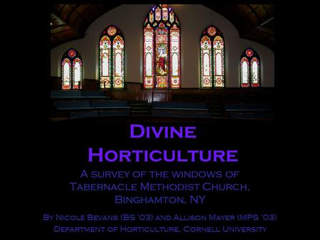 Divine Horticulture A survey of the windows of Tabernacle Methodist Church, Binghamton, NY By Nicole Bevans (BS '03) and Allison Mayer (MPS '03) Department.