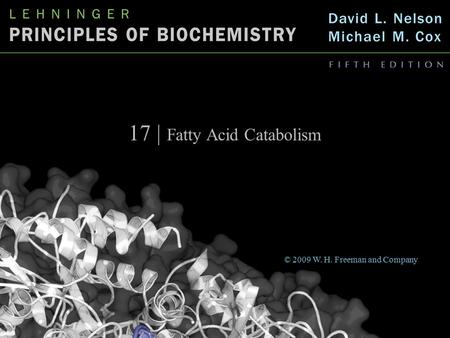 17 | Fatty Acid Catabolism © 2009 W. H. Freeman and Company.