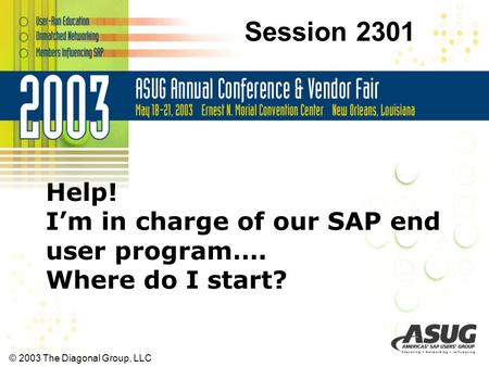 © 2003 The Diagonal Group, LLC Help! I'm in charge of our SAP end user program…. Where do I start? Session 2301.