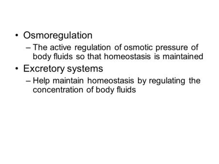 Osmoregulation –The active regulation of osmotic pressure of body fluids so that homeostasis is maintained Excretory systems –Help maintain homeostasis.