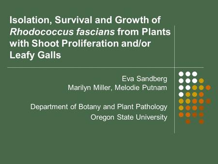 Isolation, Survival and Growth of Rhodococcus fascians from Plants with Shoot Proliferation and/or Leafy Galls Eva Sandberg Marilyn Miller, Melodie Putnam.