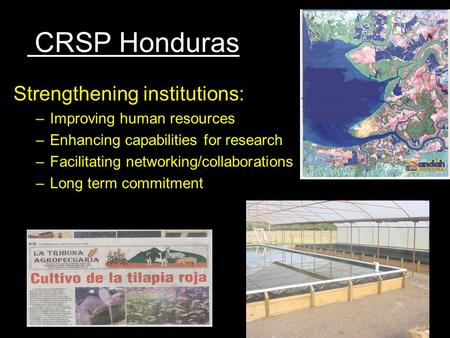 CRSP Honduras Strengthening institutions: –Improving human resources –Enhancing capabilities for research –Facilitating networking/collaborations –Long.