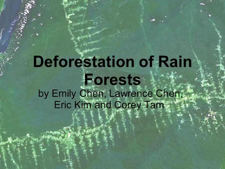 Deforestation of Rain Forests by Emily Chen, Lawrence Chen, Eric Kim and Corey Tam.