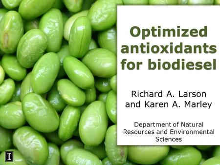 Optimized antioxidants for biodiesel Richard A. Larson and Karen A. Marley Department of Natural Resources and Environmental Sciences.