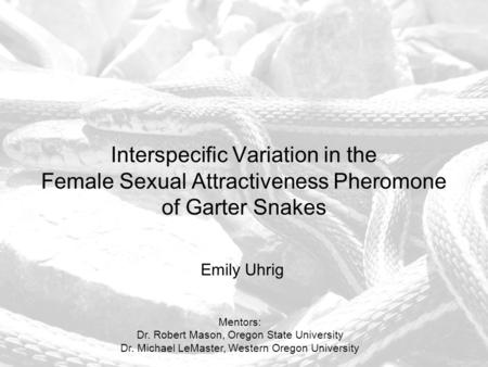 Interspecific Variation in the Female Sexual Attractiveness Pheromone of Garter Snakes Emily Uhrig Mentors: Dr. Robert Mason, Oregon State University Dr.
