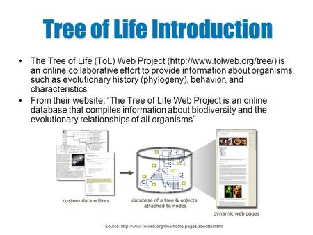 Tree of Life Introduction The Tree of Life (ToL) Web Project (http://www.tolweb.org/tree/) is an online collaborative effort to provide information about.