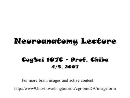 Neuroanatomy Lecture CogSci 107C – Prof. Chiba 4/5, 2007  For more brain images and active content: