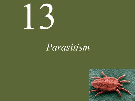 13 Parasitism. 13 Parasitism Parasite Natural History Defense and Counterdefense Coevolution Ecological Effects of Parasites Dynamics and Spread of Diseases.