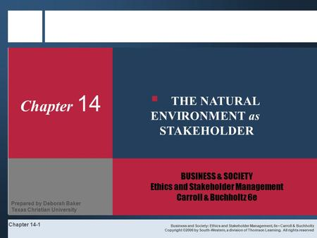THE NATURAL ENVIRONMENT as STAKEHOLDER