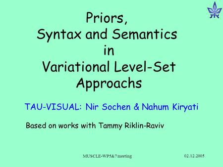 02.12.2005 MUSCLE-WP5&7 meeting Priors, Syntax and Semantics in Variational Level-Set Approachs TAU-VISUAL: Nir Sochen & Nahum Kiryati Based on works with.