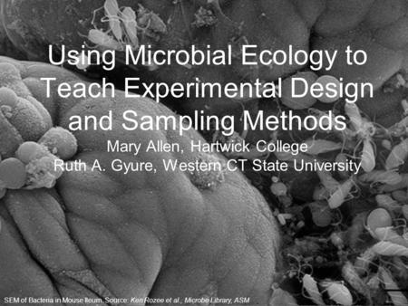 Using Microbial Ecology to Teach Experimental Design and Sampling Methods Mary Allen, Hartwick College Ruth A. Gyure, Western CT State University SEM of.