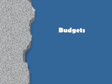 Budgets. Budget vs. Pricing Pricing 1 program Seasonal Drives budget Budget Multiple programs Fiscal year Deals with revenues & expenditures.