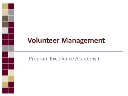 Volunteer Management Program Excellence Academy I.