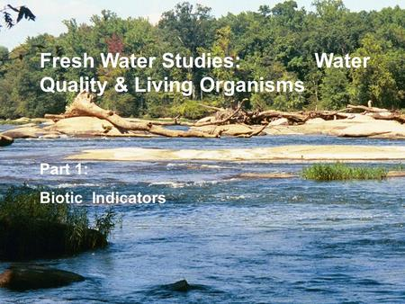 Part 1: Biotic Indicators Fresh Water Studies: Water Quality & Living Organisms.