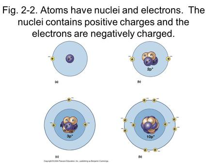 Fig. 2-2. Atoms have nuclei and electrons. The nuclei contains positive charges and the electrons are negatively charged.
