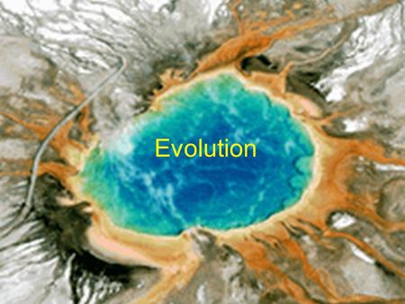 Evolution. What is Evolution? Evolution involves inheritable changes in organisms through time –Fundamental to biology and paleontology Paleontology.