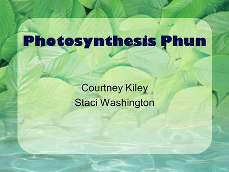 Photosynthesis Phun Courtney Kiley Staci Washington.