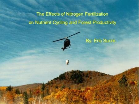 The Effects of Nitrogen Fertilization on Nutrient Cycling and Forest Productivity By: Eric Sucre.