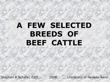 A FEW SELECTED BREEDS OF BEEF CATTLE Stephen R Schafer, EdD…… 2008 ……University of Nevada-Reno.