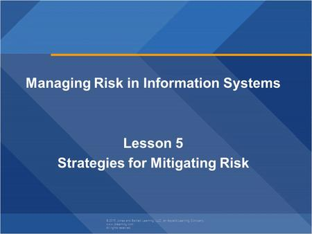 Managing Risk in Information Systems Strategies for Mitigating Risk