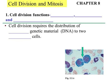 1. Cell division functions-___________,_____________ and ___________________ Cell division requires the distribution of _________ genetic material (DNA)