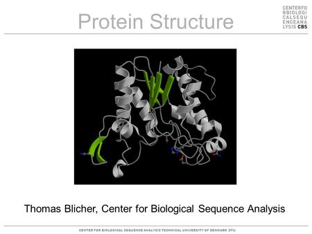 CENTER FOR BIOLOGICAL SEQUENCE ANALYSISTECHNICAL UNIVERSITY OF DENMARK DTU Protein Structure Thomas Blicher, Center for Biological Sequence Analysis.