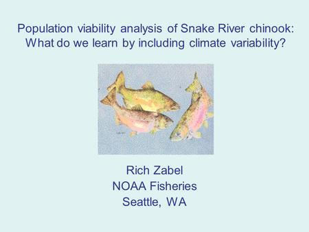 Population viability analysis of Snake River chinook: What do we learn by including climate variability? Rich Zabel NOAA Fisheries Seattle, WA.
