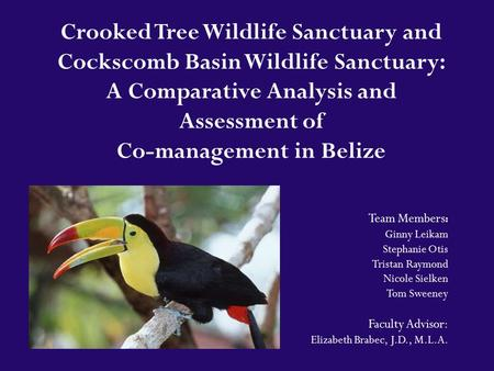 Crooked Tree Wildlife Sanctuary and Cockscomb Basin Wildlife Sanctuary: A Comparative Analysis and Assessment of Co-management in Belize Team Members :