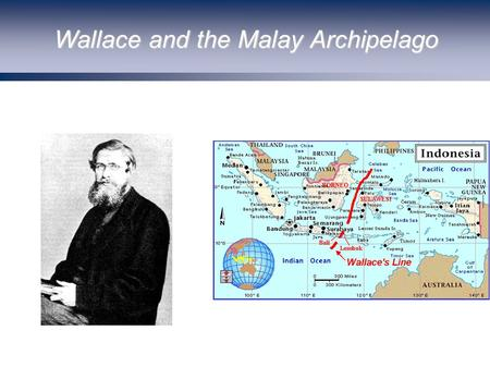 Wallace and the Malay Archipelago. Darwin and Kelvin: The Age of the Earth.
