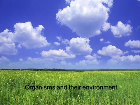 Organisms and their environment. What is Ecology? The branch of biology that developed from natural history is called Ecology. Ecology is the study of.