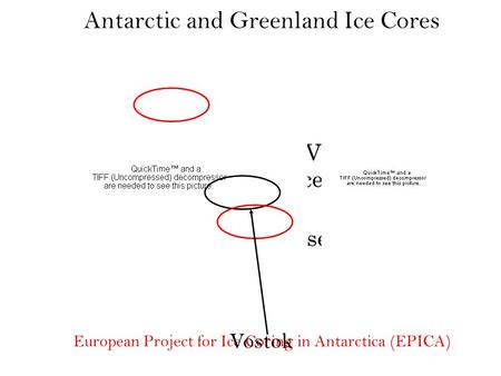 Glacial-Interglacial Variability Records of the Pleistocene Ice Ages