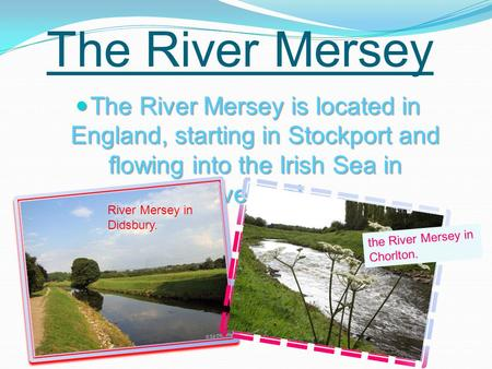 The River Mersey The River Mersey is located in England, starting in Stockport and flowing into the Irish Sea in Liverpool. The River Mersey is located.