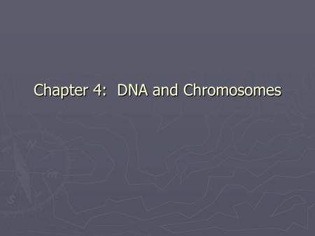 Chapter 4: DNA and <strong>Chromosomes</strong>