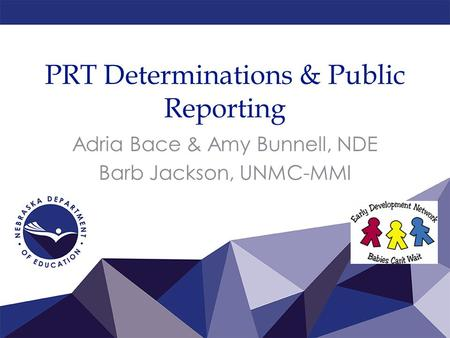 PRT Determinations & Public Reporting Adria Bace & Amy Bunnell, NDE Barb Jackson, UNMC-MMI.