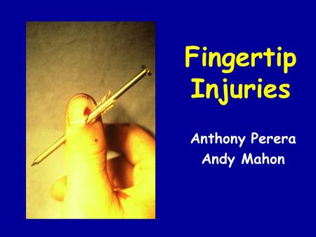 Fingertip Injuries Anthony Perera Andy Mahon. Nail Bed Anatomy Nail –keratinised squamous epithelium, acts as protective plate and increases sensitivity.