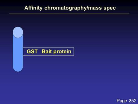 Affinity chromatography/mass spec Bait protein GST Page 252.