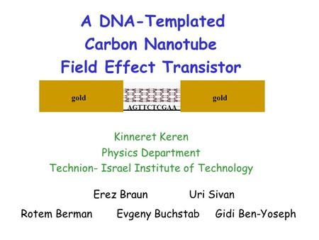 A DNA-Templated Carbon Nanotube Field Effect Transistor Erez BraunUri Sivan Rotem BermanEvgeny Buchstab Gidi Ben-Yoseph Kinneret Keren Physics Department.