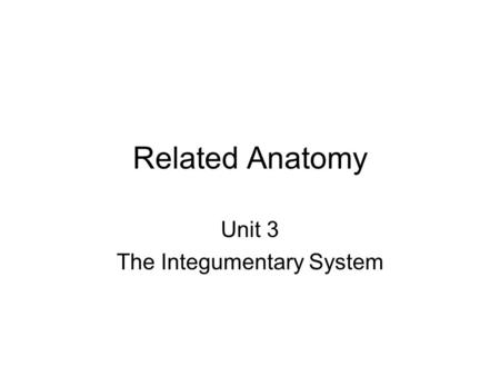 Related Anatomy Unit 3 The Integumentary System Integumentary System Skin (epithelial tissue) + Accessory organs Glands ( oil, sweat, mammory) Hair Nails.