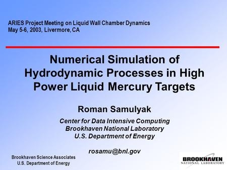 Brookhaven Science Associates U.S. Department of Energy ARIES Project Meeting on Liquid Wall Chamber Dynamics May 5-6, 2003, Livermore, CA Numerical Simulation.