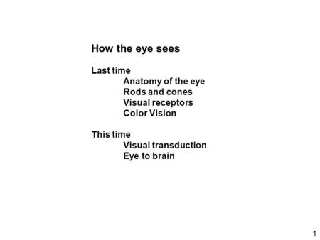 How the eye sees Last time Anatomy of the eye Rods and cones Visual receptors Color Vision This time Visual transduction Eye to brain 1.